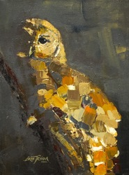 •Spotted Owl, study-SOLD